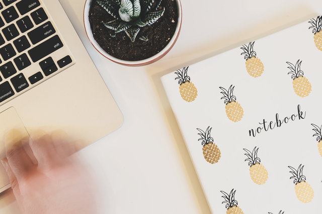 Hand laptop notebook pineapple plant