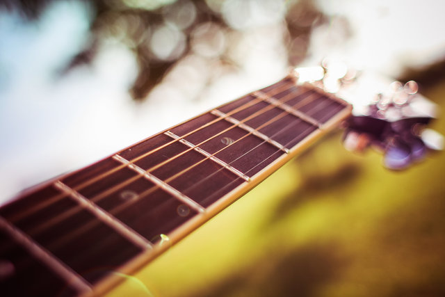 Acoustic acoustic guitar blur bokeh bowed stringed instrument