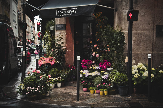 Architecture building city doorway flower shop