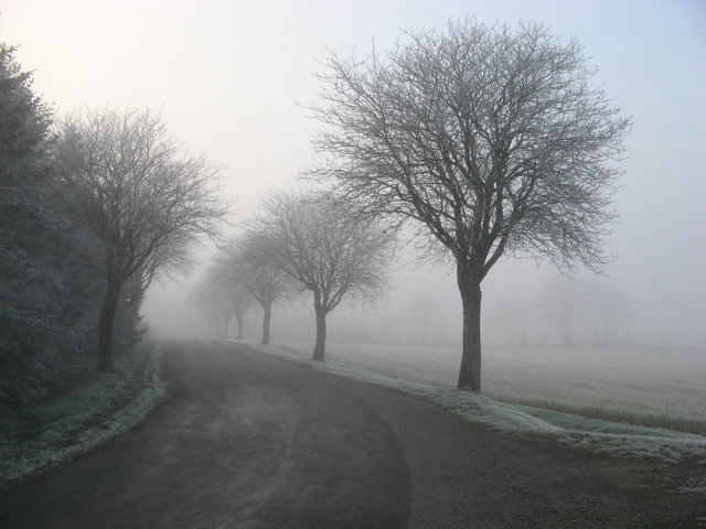 Alone cold countryside fog foggy
