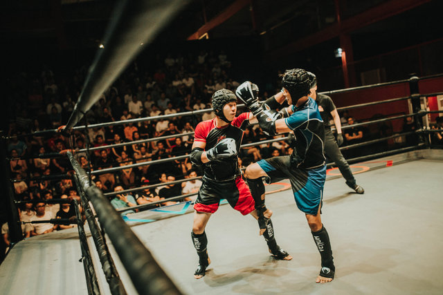 Action adult athletes battle boxing