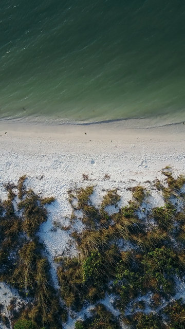 Aerial aerial shot beach bird s eye view daylight