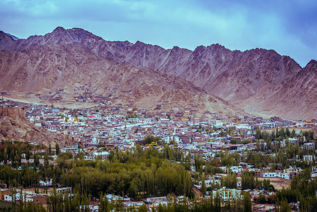 City daylight landscape leh mountain