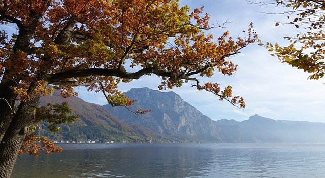 Traunsee autumn mood fall foliage salzkammergut