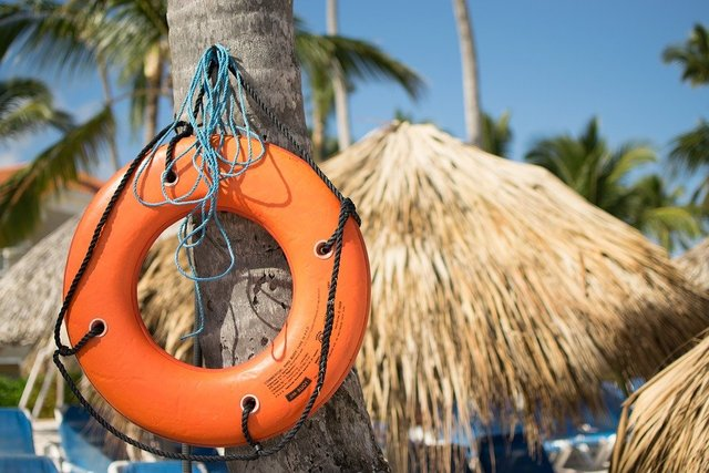 Lifebelt lifeguard swim holiday palm trees
