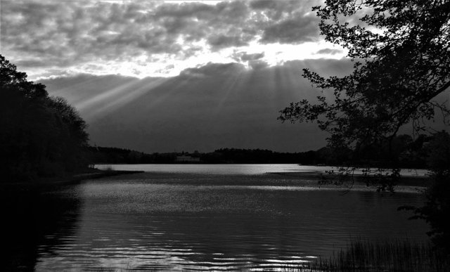 Night lake water evening himmel