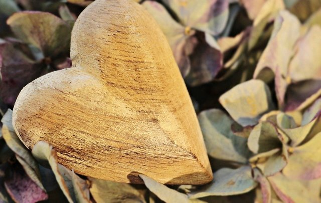 Heart wooden heart hydrangea flower wood