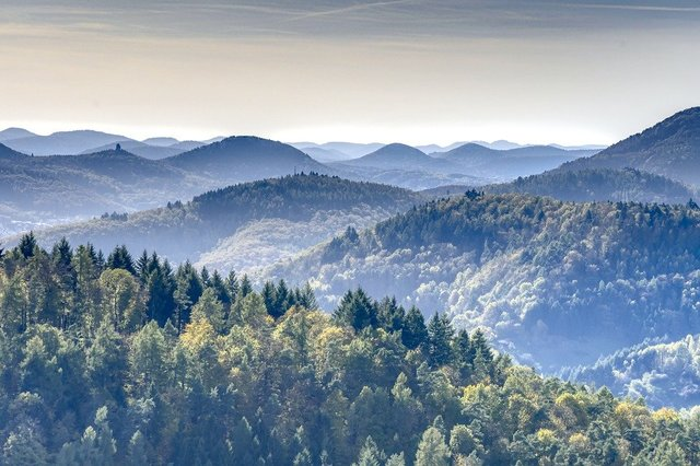 Mountains forest palatinate palatinate forest hdr
