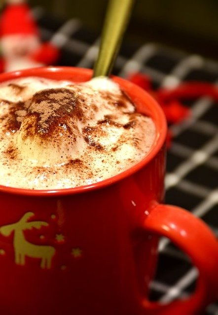 Cup chocolate cocoa hot milk foam