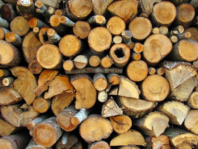 Firewood pile wood village sawn