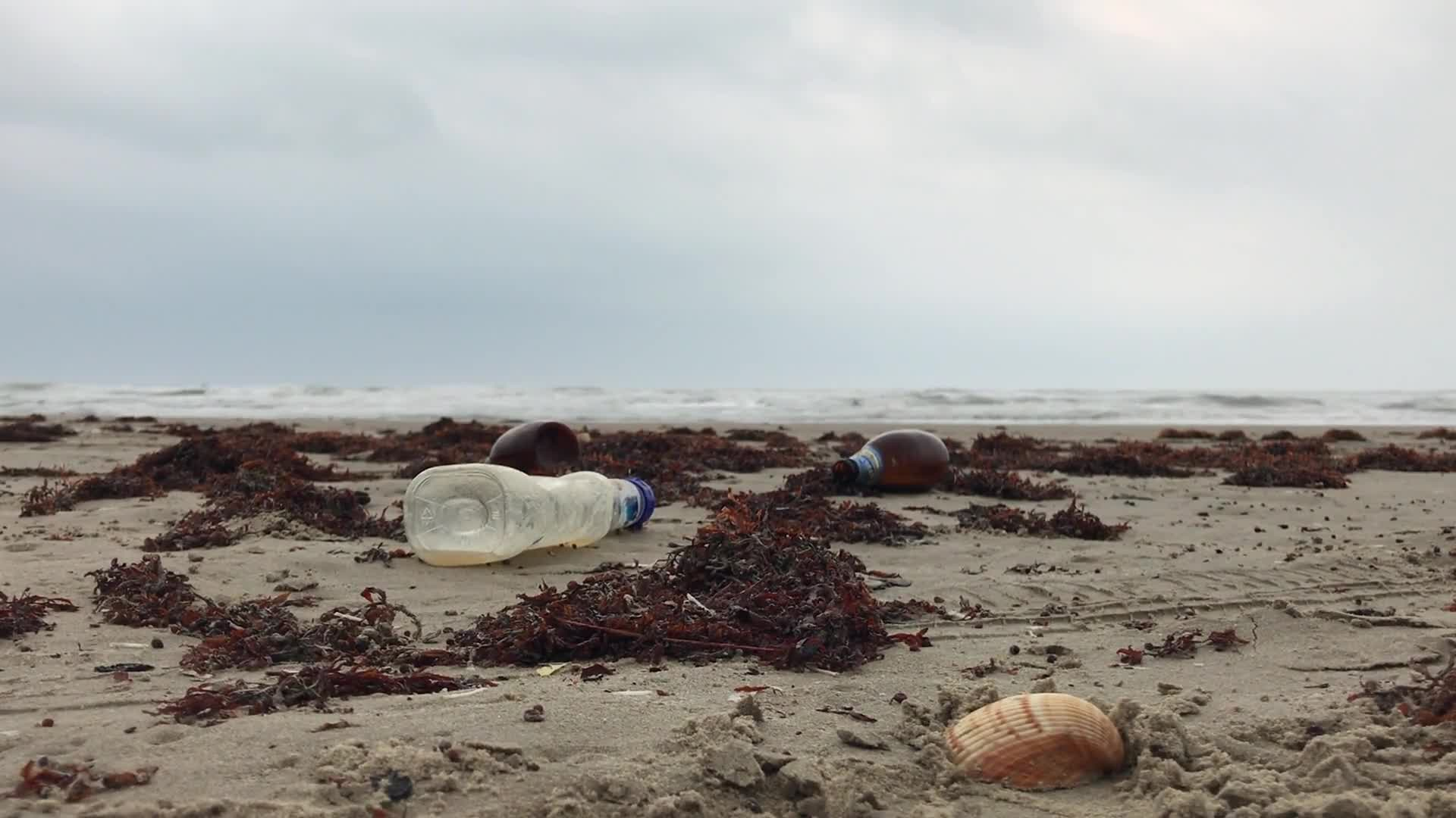 Empty bottles on shore
