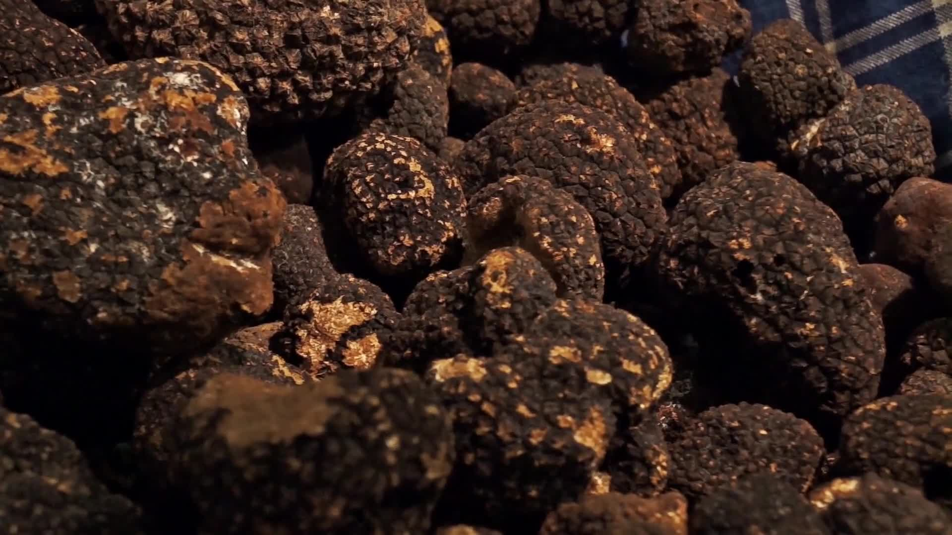 Bunch of truffles