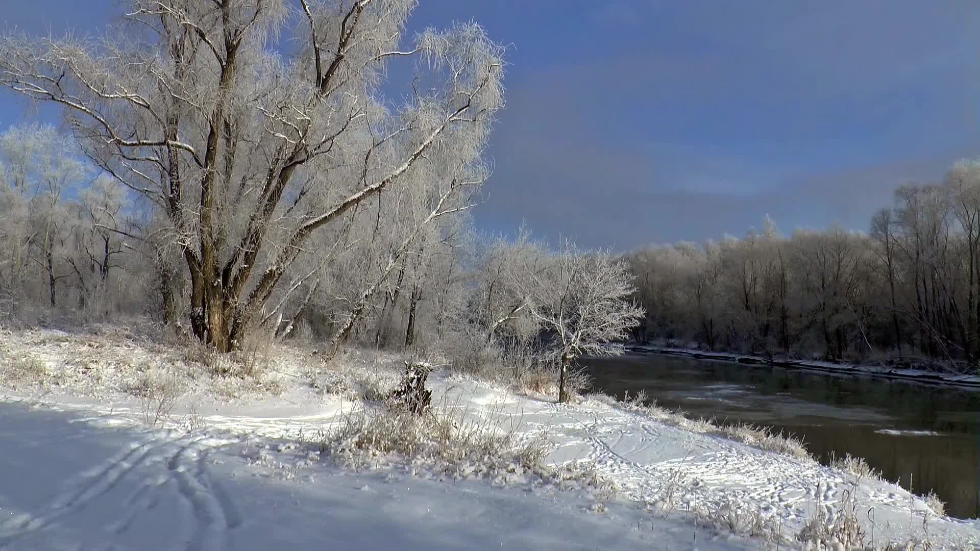 Video of flowing river during winter