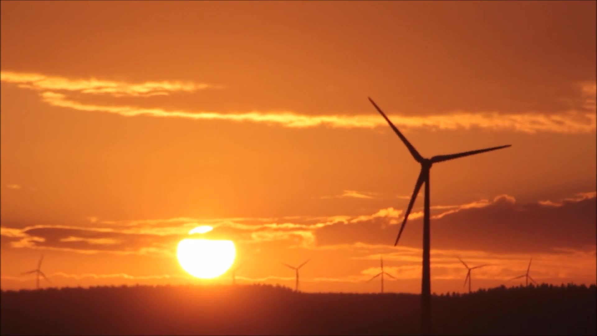 Video footage of windmills during sunset