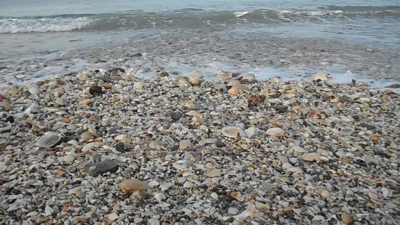 Video of shore water