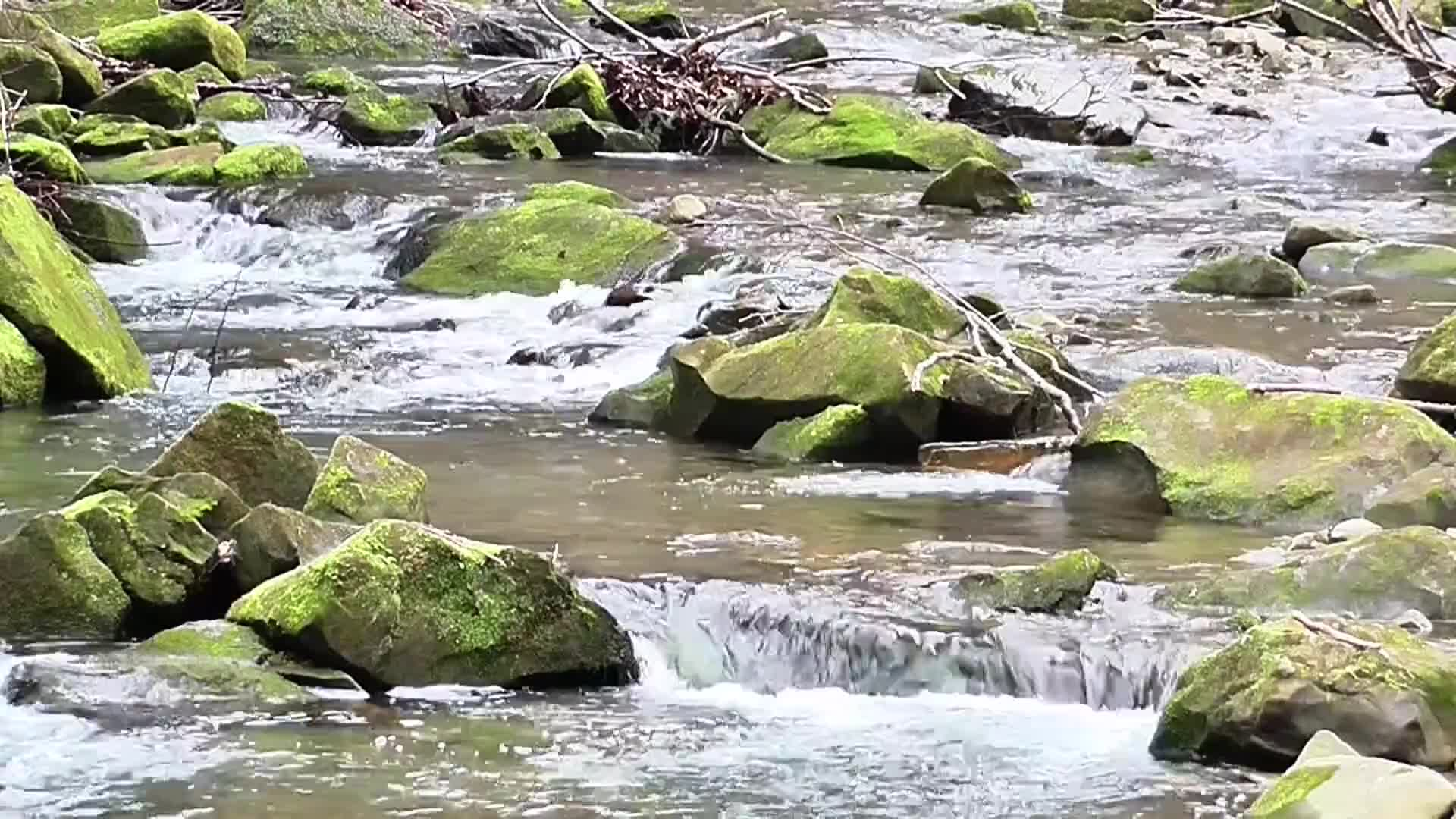 Video footage of water stream