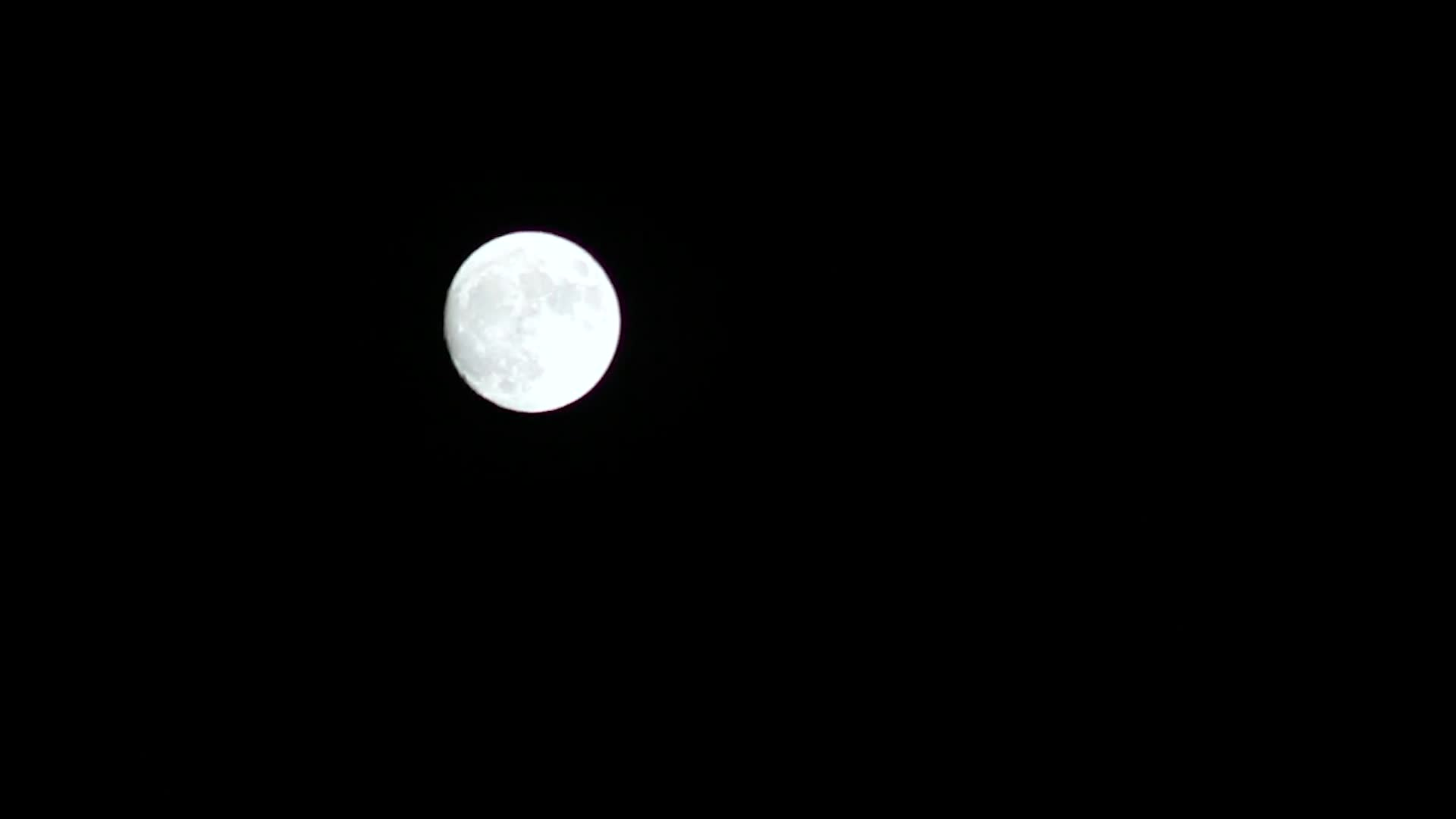 Rising full moon timelapse