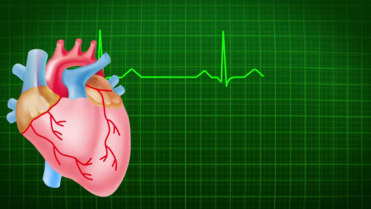 Heart beats ecg heart medical