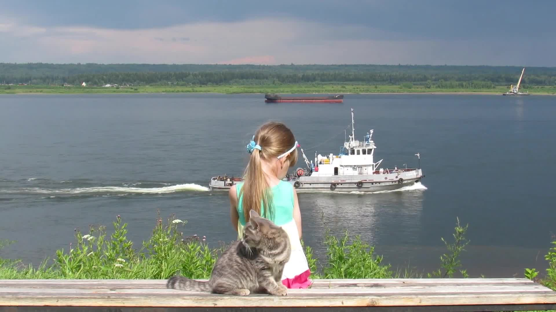 The little girl cat surprise boat river