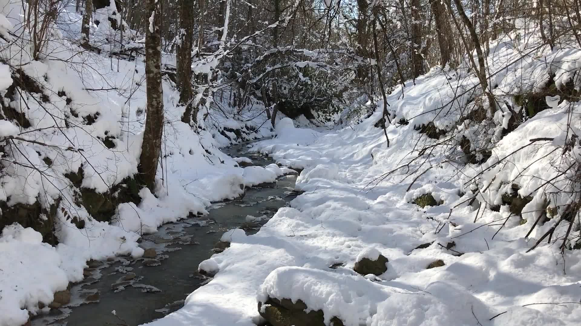 Nature snow water tea streaming