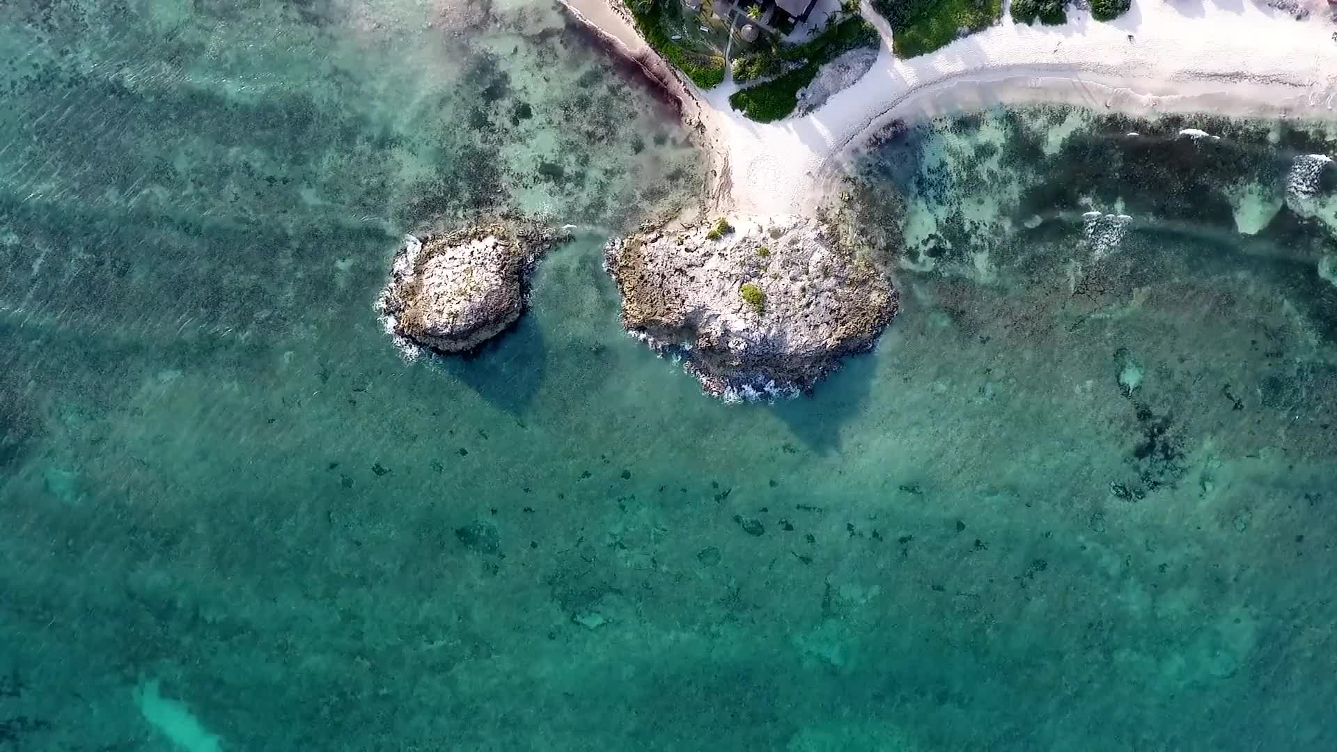 Beach shore aerial view reef sea