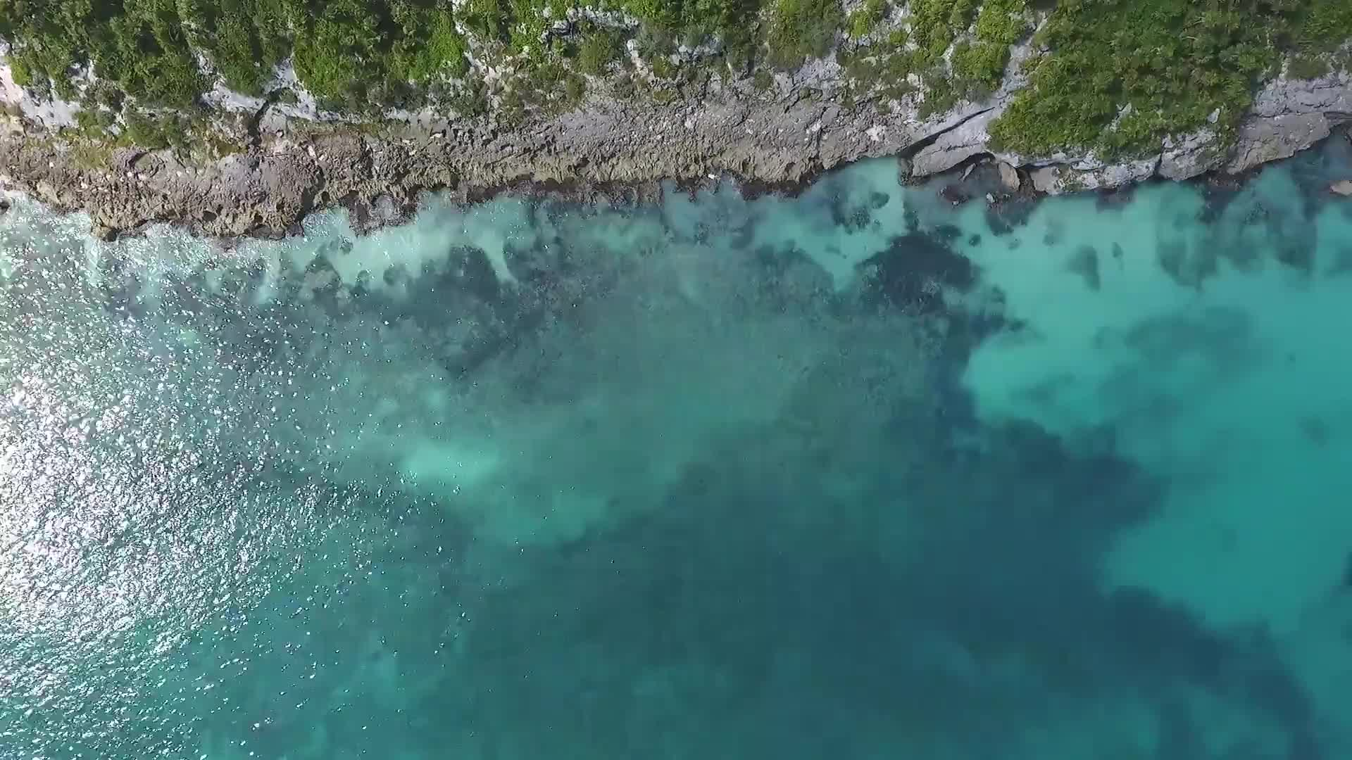 Beach shore aerial view reef