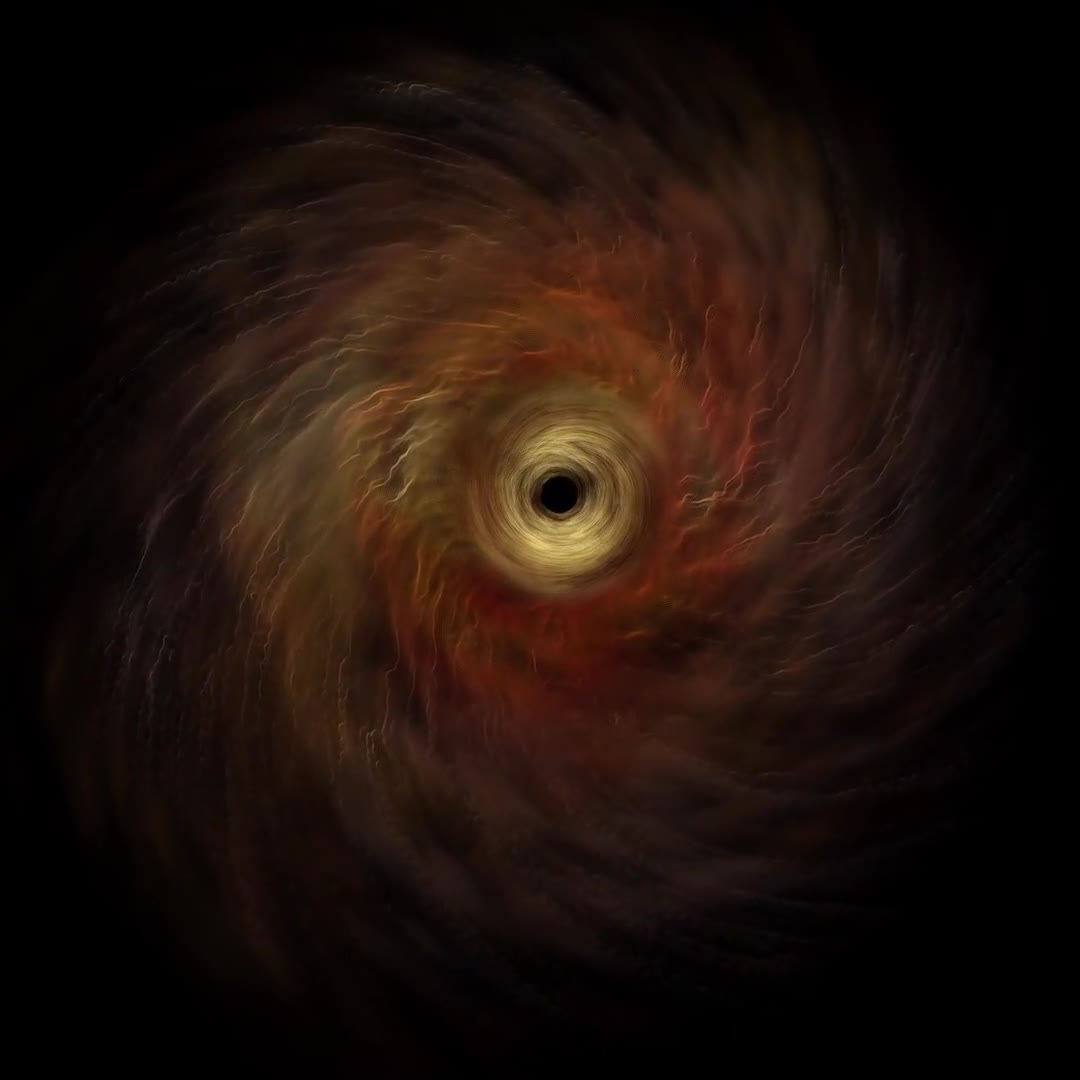 Black hole swirl hole matter portal